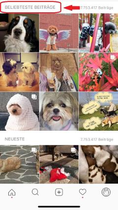 Instagram beliebteste Beiträge Beispielfoto