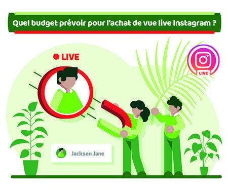 Quel budget prévoir pour l'achat de vue live Instagram?