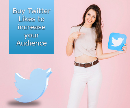 Buy Twitter Likes to increase your Audience